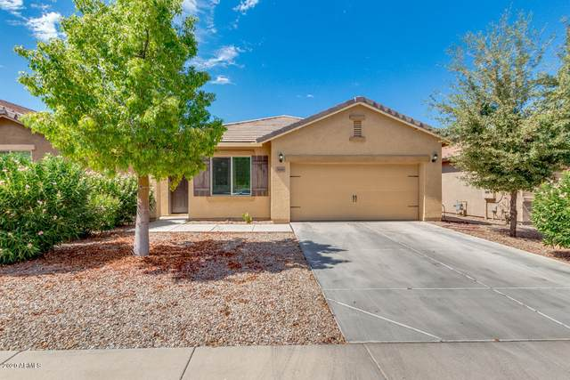 4542 W White Canyon Road, Queen Creek, AZ 85142 (MLS #6101481) :: Conway Real Estate