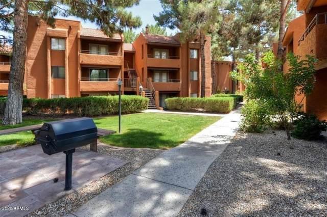 4704 E Paradise Village Parkway N #208, Phoenix, AZ 85032 (MLS #6101493) :: Yost Realty Group at RE/MAX Casa Grande