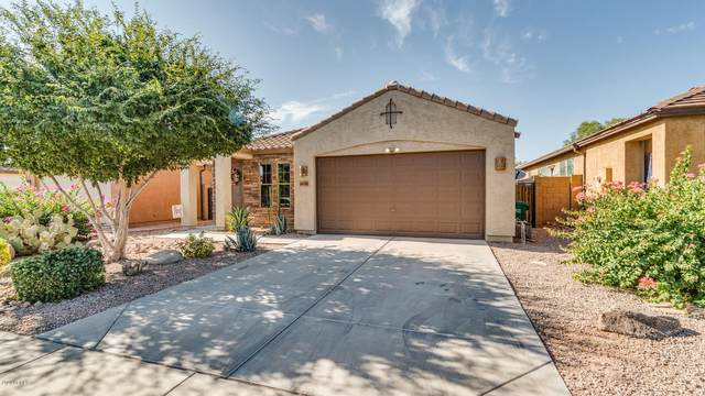 36598 W Picasso Street, Maricopa, AZ 85138 (MLS #6101494) :: Yost Realty Group at RE/MAX Casa Grande