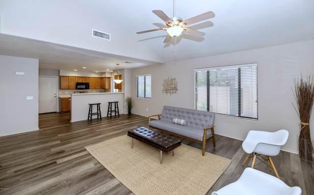 8802 N 47TH Lane, Glendale, AZ 85302 (MLS #6101515) :: Kathem Martin