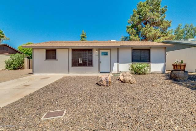 17244 N Paradise Park Drive, Phoenix, AZ 85032 (MLS #6101543) :: Kathem Martin