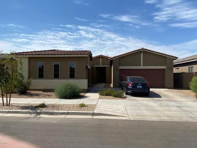 22927 E Via Del Oro, Queen Creek, AZ 85142 (MLS #6101548) :: Yost Realty Group at RE/MAX Casa Grande