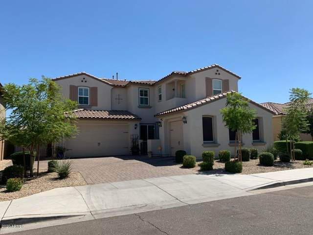 14711 W Reade Avenue, Litchfield Park, AZ 85340 (MLS #6101580) :: The Luna Team