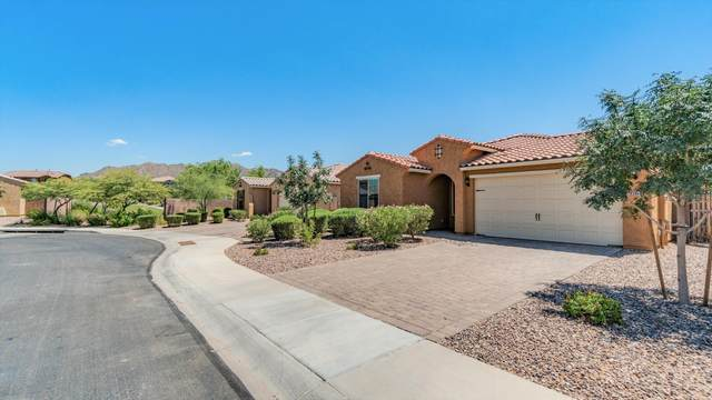 7764 S Stuart Avenue, Gilbert, AZ 85298 (MLS #6101658) :: neXGen Real Estate