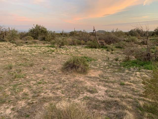 XXXX N 168th Street, Rio Verde, AZ 85263 (MLS #6101660) :: Kepple Real Estate Group