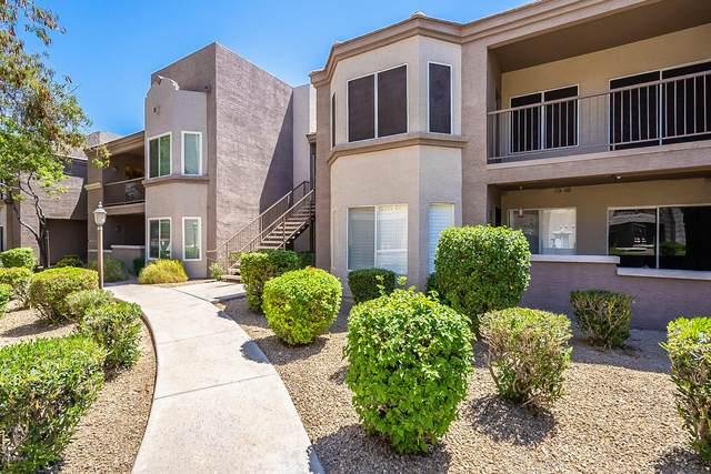 17017 N 12TH Street #2039, Phoenix, AZ 85022 (MLS #6101665) :: Arizona Home Group