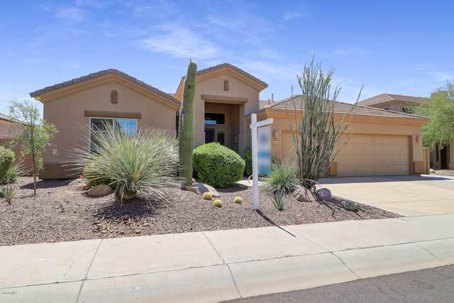 22223 N 55TH Street, Phoenix, AZ 85054 (MLS #6101693) :: Service First Realty