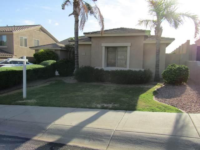 25806 N Singbush Loop, Phoenix, AZ 85083 (MLS #6101696) :: Dijkstra & Co.