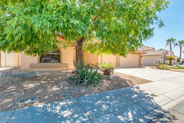 12725 W Windsor Avenue, Avondale, AZ 85392 (MLS #6101736) :: ASAP Realty