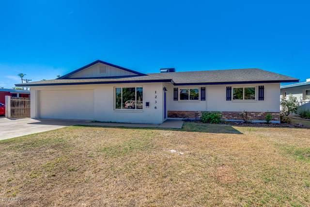 1236 E Loma Vista Drive, Tempe, AZ 85282 (MLS #6101742) :: Klaus Team Real Estate Solutions