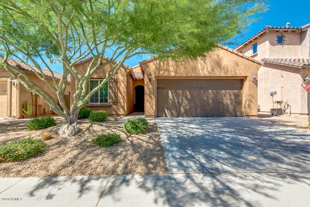 3608 E Abraham Lane, Phoenix, AZ 85050 (MLS #6101770) :: Klaus Team Real Estate Solutions