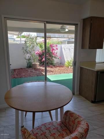 10568 W Coggins Drive, Sun City, AZ 85351 (MLS #6101776) :: The Laughton Team