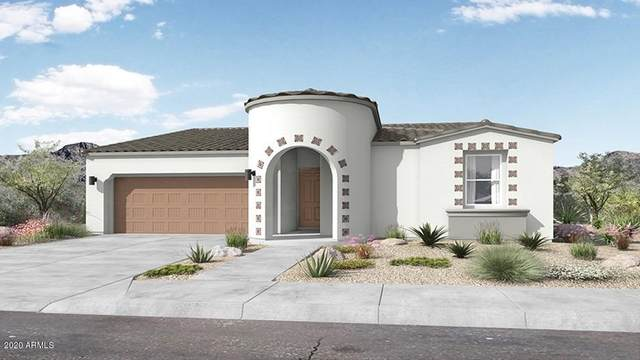 24760 N 143rd Drive, Surprise, AZ 85387 (MLS #6101785) :: Service First Realty