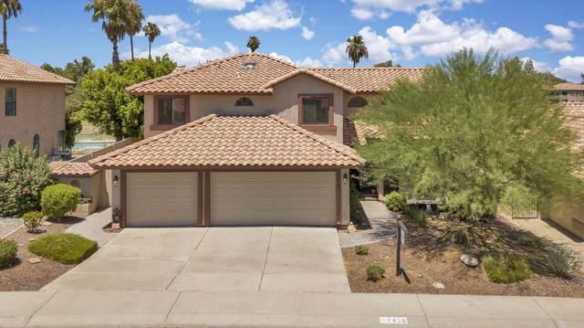 7438 W Oraibi Drive, Glendale, AZ 85308 (MLS #6101826) :: REMAX Professionals