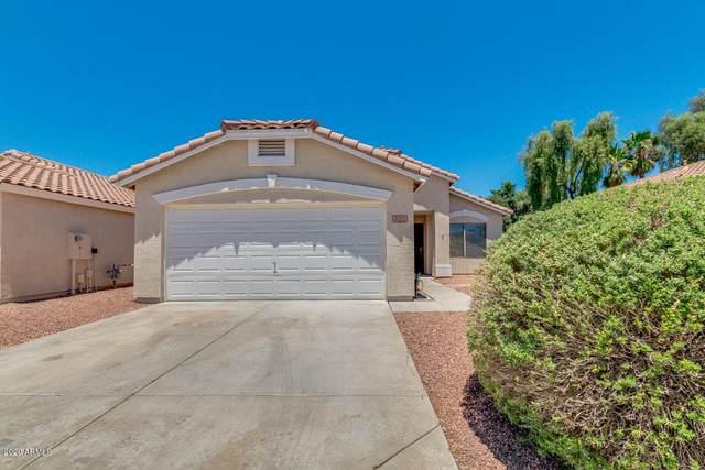 812 E Monona Drive, Phoenix, AZ 85024 (MLS #6101837) :: Dijkstra & Co.