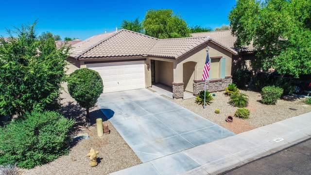 18554 N Celis Street, Maricopa, AZ 85138 (MLS #6101846) :: REMAX Professionals