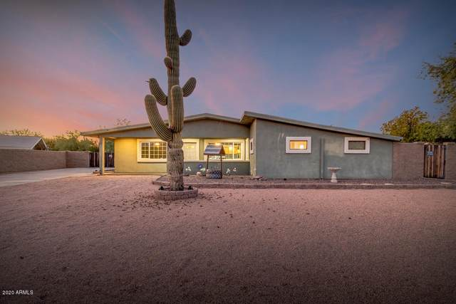 1002 E Hondo Avenue, Apache Junction, AZ 85119 (MLS #6101865) :: Yost Realty Group at RE/MAX Casa Grande