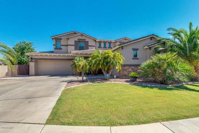 3447 E Blue Ridge Way, Gilbert, AZ 85298 (MLS #6101904) :: Long Realty West Valley