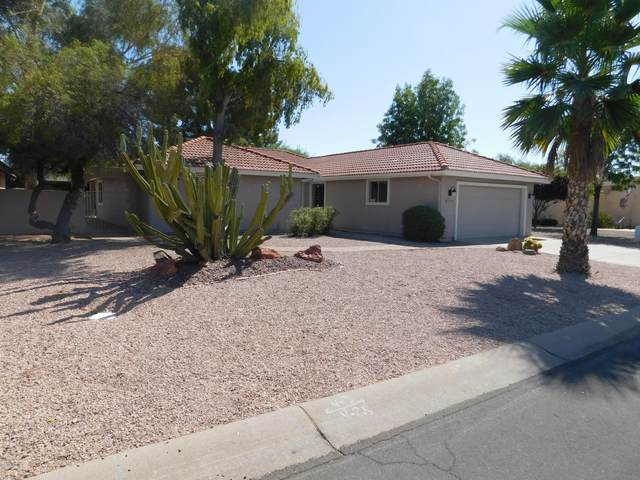 25640 S Howard Drive, Sun Lakes, AZ 85248 (MLS #6101945) :: Keller Williams Realty Phoenix