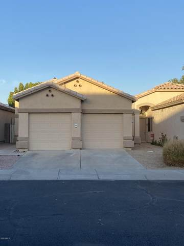 19823 N 49TH Avenue, Glendale, AZ 85308 (MLS #6101957) :: Kepple Real Estate Group