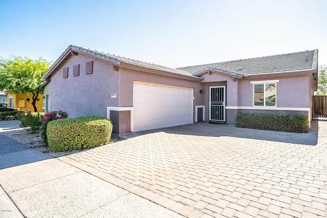 8025 S 5TH Avenue, Phoenix, AZ 85041 (MLS #6101965) :: Conway Real Estate