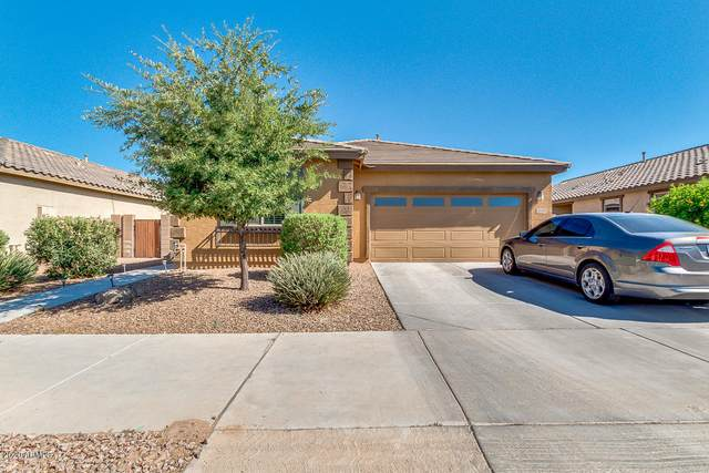 21129 E Via De Olivos, Queen Creek, AZ 85142 (MLS #6101990) :: The C4 Group