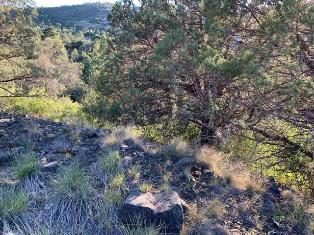 2300 W Loma Vista Drive, Prescott, AZ 86305 (MLS #6102001) :: Devor Real Estate Associates