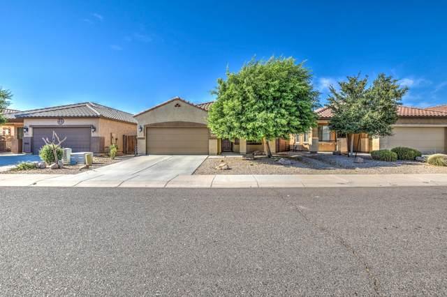 4196 E Alamo Street, San Tan Valley, AZ 85140 (MLS #6102030) :: Arizona Home Group