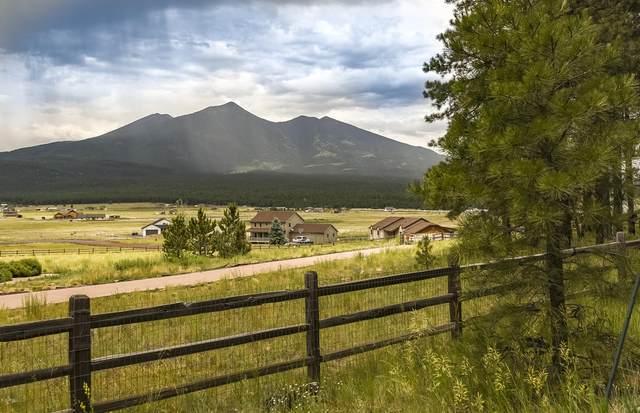 7267/7305 W Serenity Falls Drive, Flagstaff, AZ 86001 (MLS #6102041) :: Lifestyle Partners Team