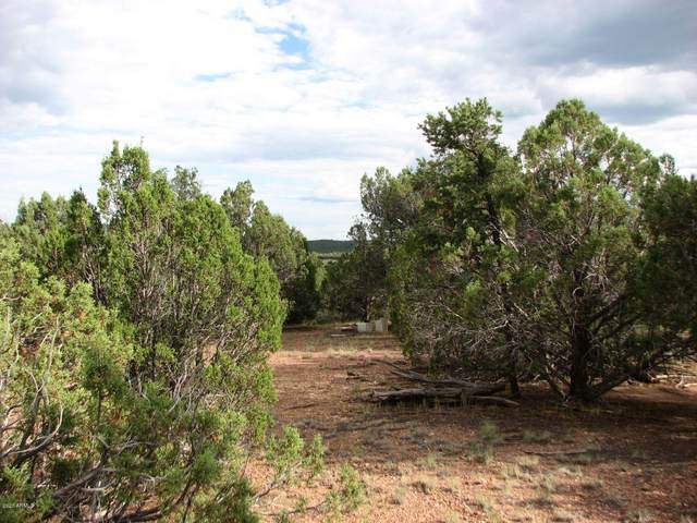 4982 Elk Trail Road, Clay Springs, AZ 85923 (MLS #6102063) :: Scott Gaertner Group
