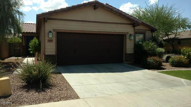 3612 S Washington Street, Chandler, AZ 85286 (MLS #6102085) :: Relevate | Phoenix