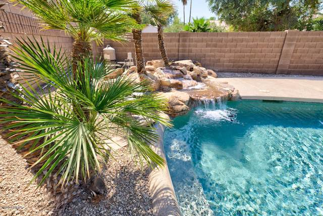 4771 W Geronimo Street, Chandler, AZ 85226 (MLS #6102125) :: Relevate | Phoenix