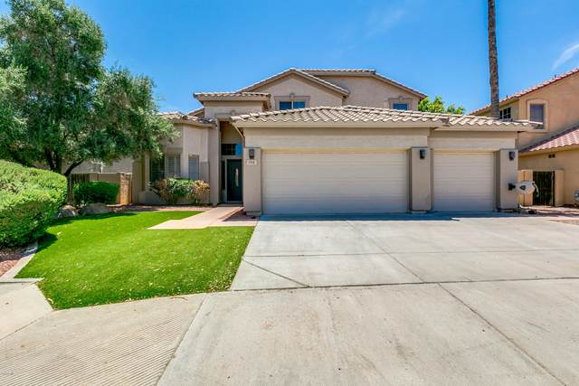 793 W Carob Way, Chandler, AZ 85248 (MLS #6102153) :: The Property Partners at eXp Realty