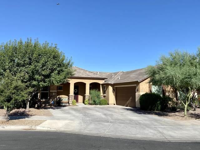 21976 S 219TH Street, Queen Creek, AZ 85142 (MLS #6102173) :: The Laughton Team