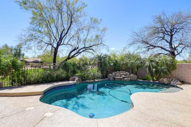7701 E Buteo Drive, Scottsdale, AZ 85255 (MLS #6102248) :: Homehelper Consultants