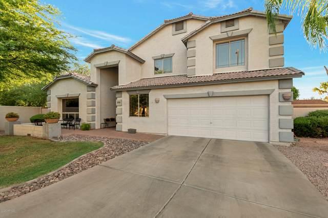 1338 N Bonito Court, Gilbert, AZ 85233 (MLS #6102251) :: Klaus Team Real Estate Solutions