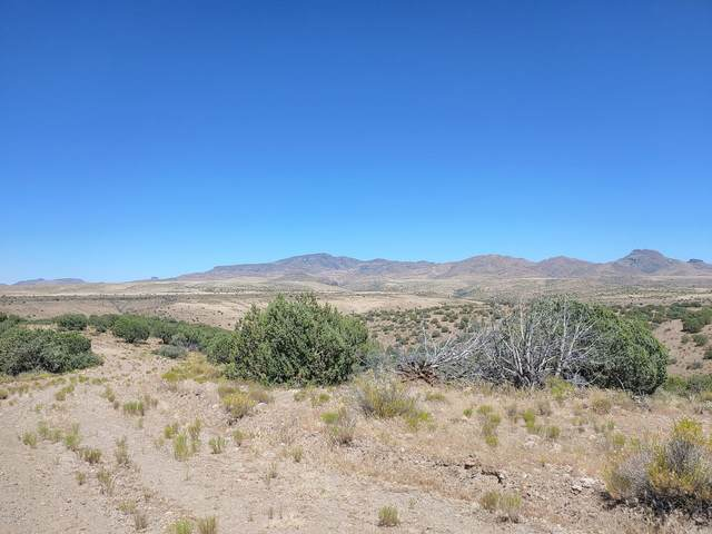Lot 243 S Uss Arizona Road, Wikieup, AZ 85360 (MLS #6102266) :: The Daniel Montez Real Estate Group