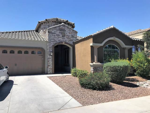 255 E Mead Drive, Chandler, AZ 85249 (MLS #6102276) :: The C4 Group