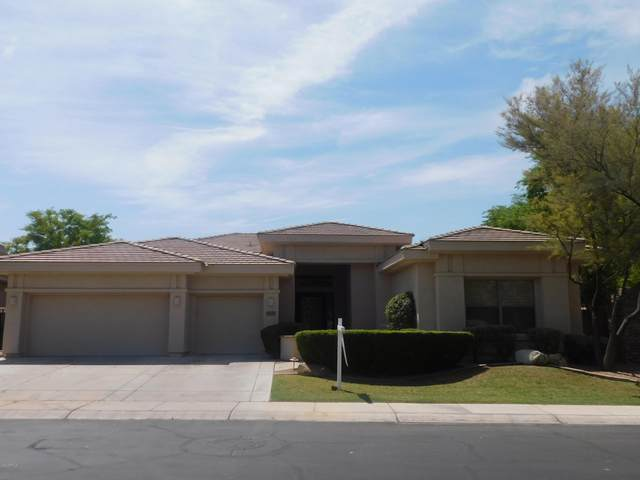 1629 W Glacier Way, Chandler, AZ 85248 (MLS #6102279) :: Relevate | Phoenix