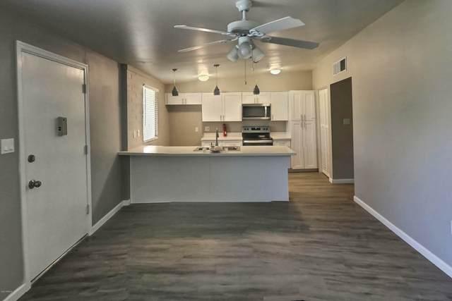 10419 W Peoria Avenue, Sun City, AZ 85351 (MLS #6102325) :: Lucido Agency