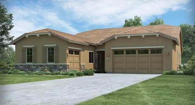 16828 W Creedance Boulevard, Surprise, AZ 85387 (MLS #6102334) :: Kepple Real Estate Group