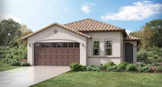 11581 N 187TH Drive, Surprise, AZ 85388 (MLS #6102335) :: Sheli Stoddart Team | M.A.Z. Realty Professionals
