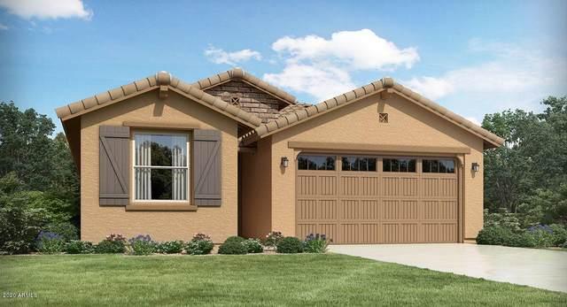 11573 N 187TH Drive, Surprise, AZ 85388 (MLS #6102337) :: Sheli Stoddart Team | M.A.Z. Realty Professionals