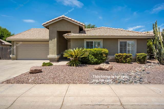 1230 S Crossbow Place, Chandler, AZ 85286 (MLS #6102413) :: The C4 Group