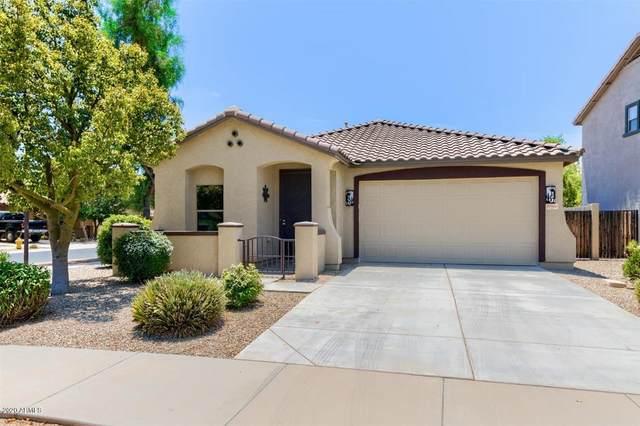 21869 E Gold Canyon Drive, Queen Creek, AZ 85142 (MLS #6102433) :: Homehelper Consultants