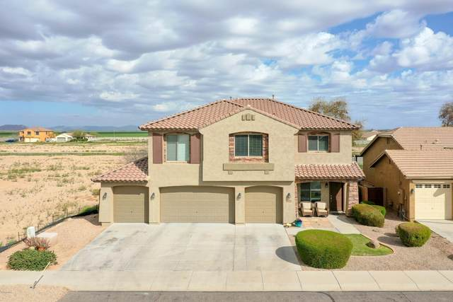 35952 W Catalonia Drive, Maricopa, AZ 85138 (MLS #6102436) :: Yost Realty Group at RE/MAX Casa Grande