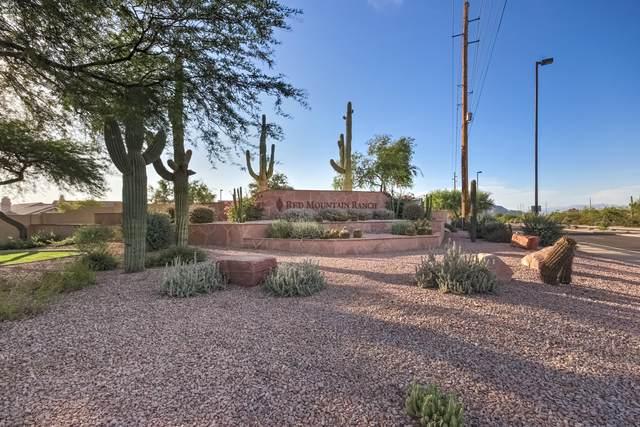 6111 E Snowdon Street, Mesa, AZ 85215 (MLS #6102485) :: Dave Fernandez Team | HomeSmart