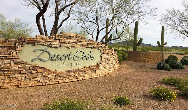 17369 W Red Bird Road, Surprise, AZ 85387 (MLS #6102500) :: Homehelper Consultants