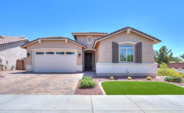 99 E Horseshoe Drive, Chandler, AZ 85249 (MLS #6102548) :: The C4 Group