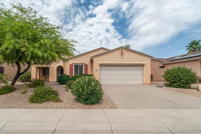 18496 N Summerbreeze Way, Surprise, AZ 85374 (MLS #6102551) :: Homehelper Consultants